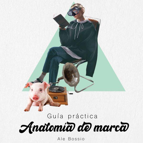 Imagem principal do produto Guía practica para definir la anatomía de marca