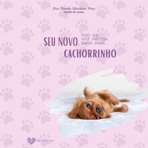 Imagem principal do produto E-book Meu primeiro pet (cão)