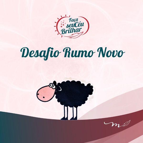 Imagem principal do produto Desafio Rumo Novo