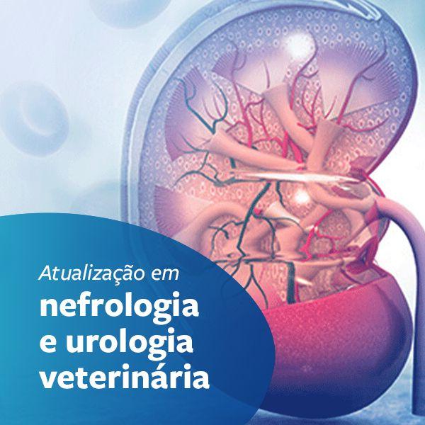 Imagem principal do produto Atualização em nefrologia e urologia veterinária