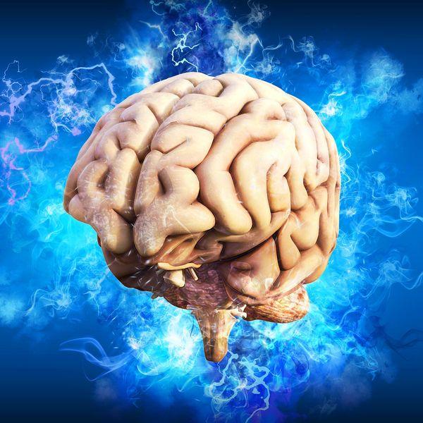 Imagem principal do produto A Neurociência da Educação em Sala de Aula