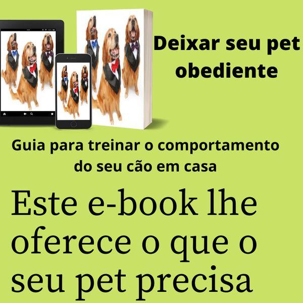 Imagem principal do produto Deixar seu pet obediente