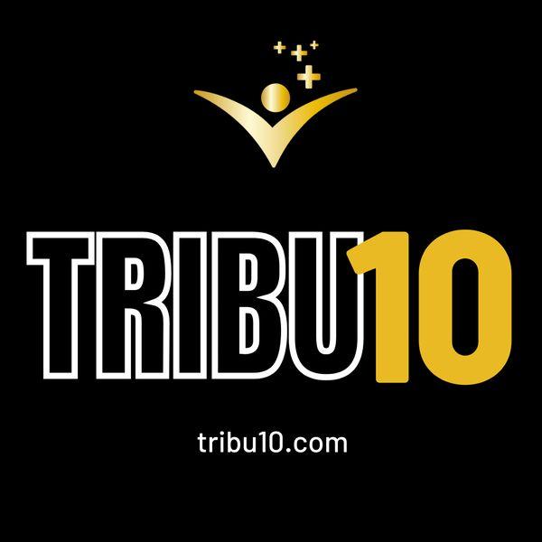 Imagem principal do produto Tribu10 - Mentalidad financiera para emprendedores que quieren escalar sus negocios y construir su libertad financiera