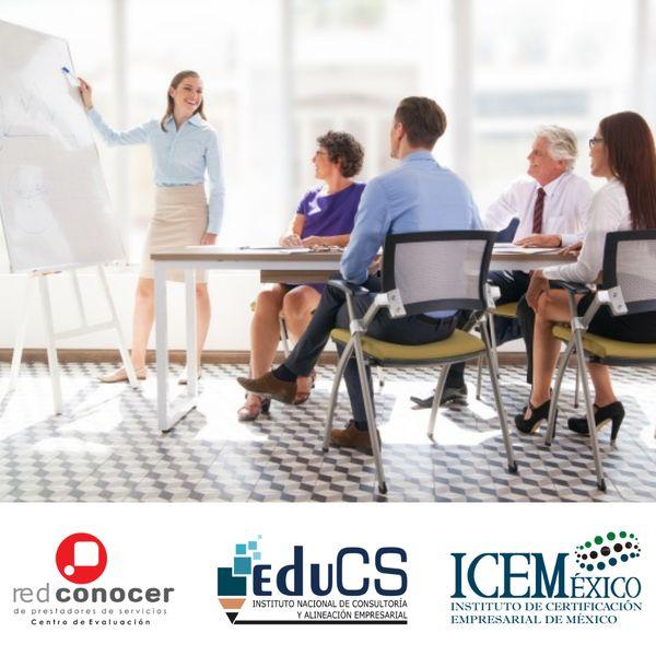 Imagem principal do produto Doble Certificación EC0217 y EC0301
