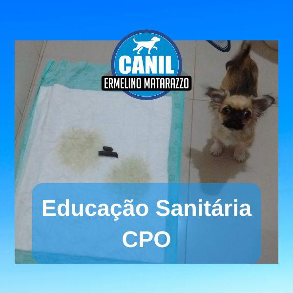 Imagem principal do produto Educação Sanitária CPO