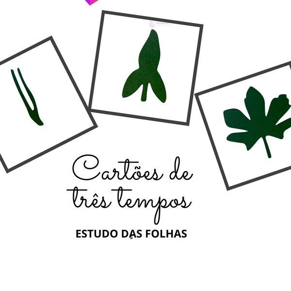 Imagem principal do produto Estudo das folhas Botânica Montessori 24 modelos de folhas