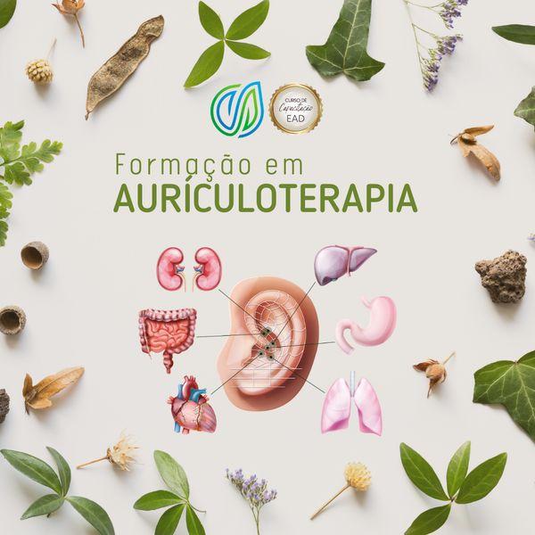 Imagem principal do produto Formação em Auriculoterapia EAD (on-line)