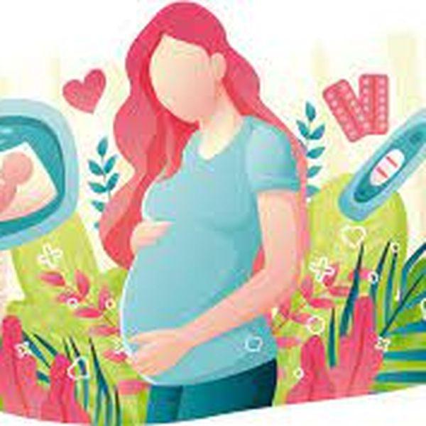 Imagem principal do produto Ginecología y obstetricia para estudiantes de medicina