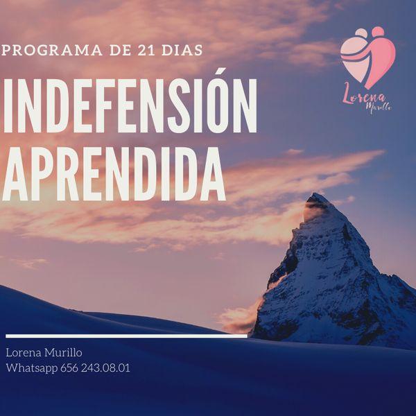 Imagem principal do produto INDEFENSION APRENDIDA PROGRAMA DE 21 DIAS