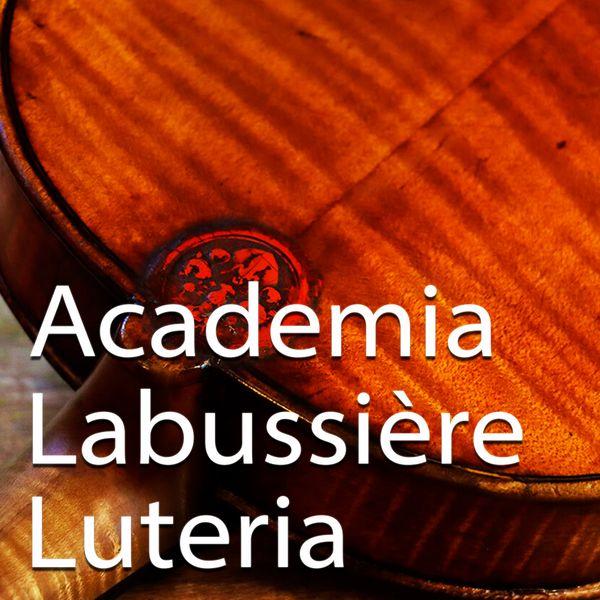 Imagem principal do produto Academia Labussière de Luteria