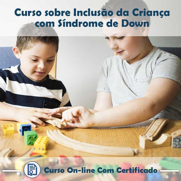 Imagem principal do produto Curso Inclusão da Criança com Síndrome de Down