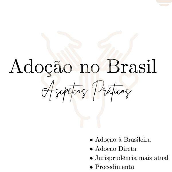 Imagem principal do produto Adoção no Brasil: Aspectos Práticos