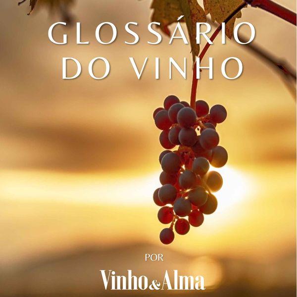 Imagem principal do produto Glossário do Vinho