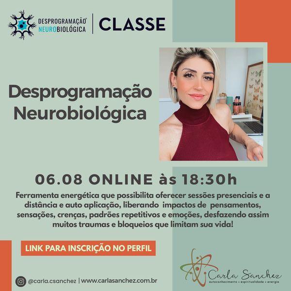 Imagem principal do produto CURSO DESPROGRAMAÇÃO NEUROBIOLÓGICA - FACILITADORA CARLA SANCHEZ