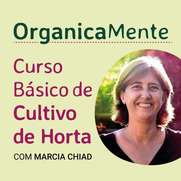 Imagem principal do produto OrganicaMente • Curso Básico de Cultivo de Horta • Com Marcia Chiad