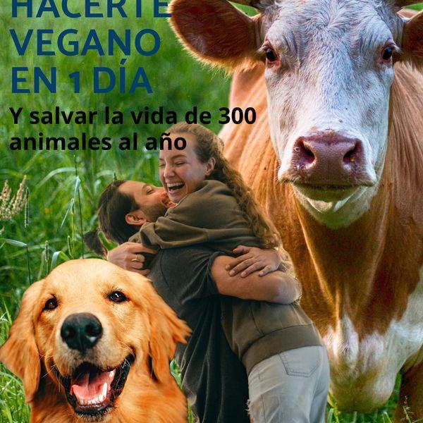 Imagem principal do produto Cómo hacerte vegano en 1 día y salvar la vida de 300 animales al año