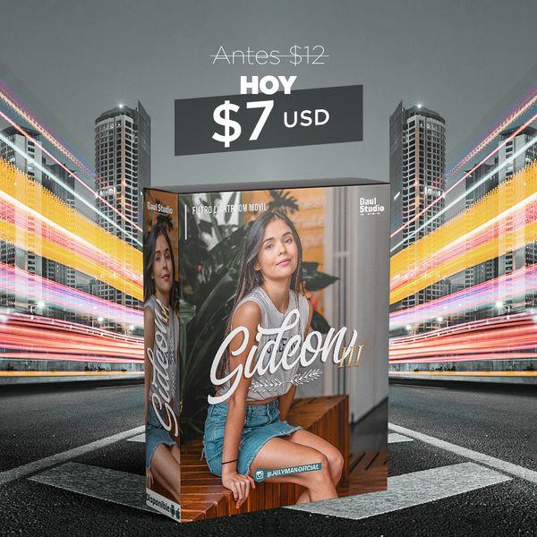 Imagem principal do produto Filtro (Preset) Adobe Lightroom - Gideon III