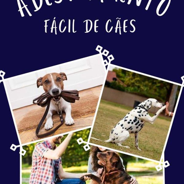Imagem principal do produto ADESTRAMENTO FÁCIL DE CÃES