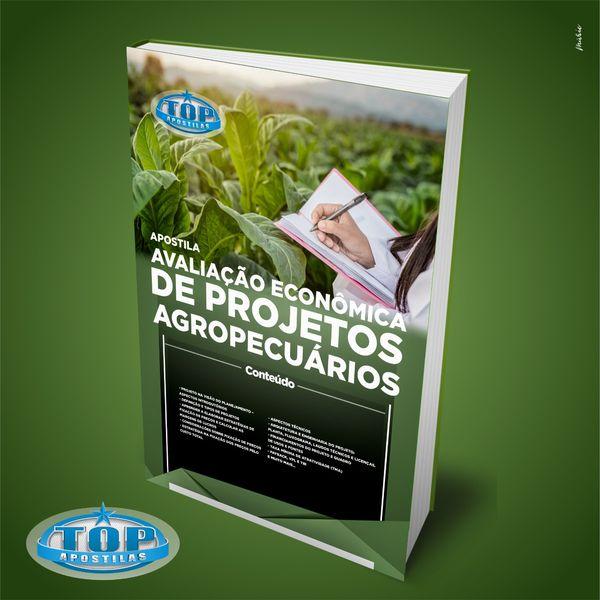 Imagem principal do produto Ebook Avaliação Econômica de Projetos Agropecuários