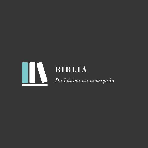 Imagem principal do produto Bíblia do básico ao avançado
