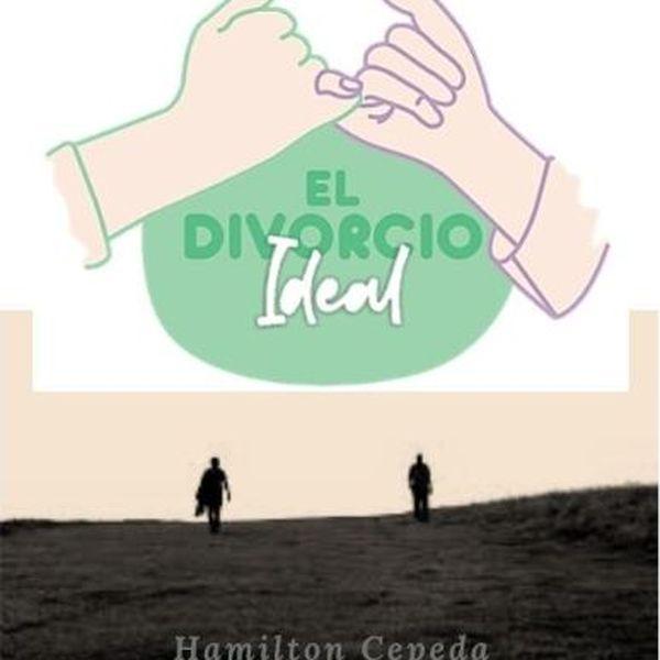 Imagem principal do produto EL DIVORCIO IDEAL