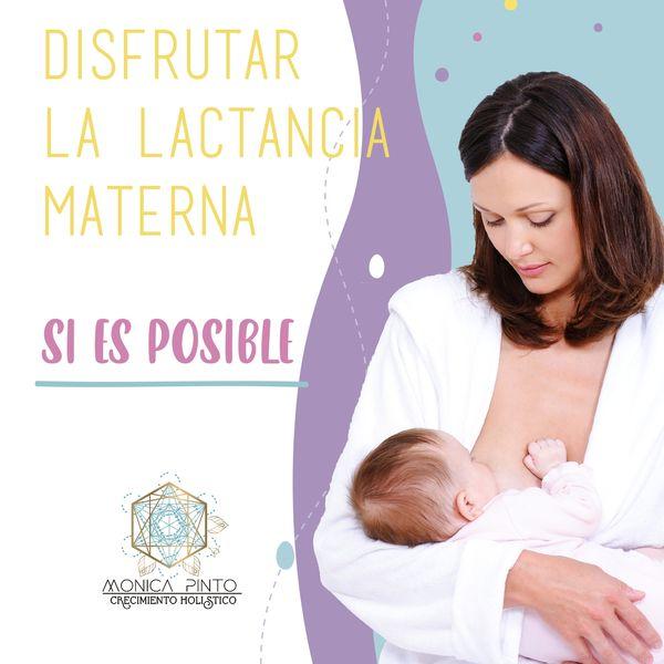Imagem principal do produto Disfrutar La lactancia Materna ¡Si es posible!