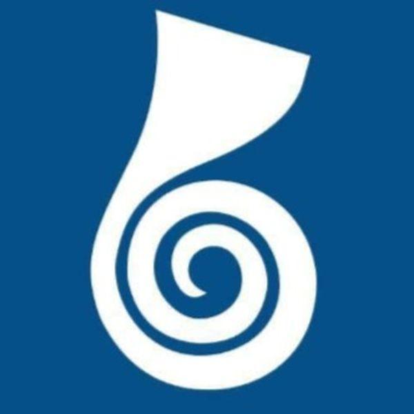Imagem principal do produto Bandagens Terapêuticas - 3 x 115,66