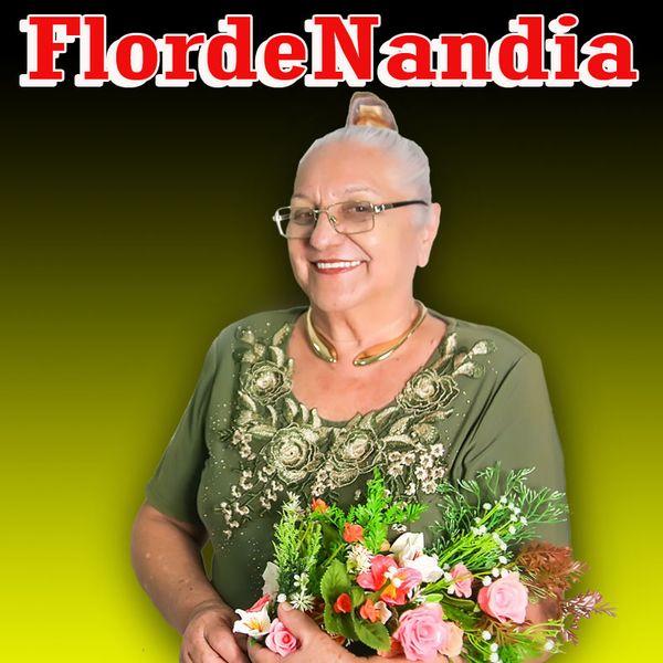 Imagem principal do produto Curso FlordeNandia