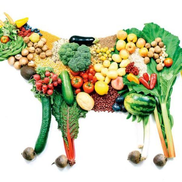 Imagem principal do produto +300 Receitas Vegana e Vegetariana