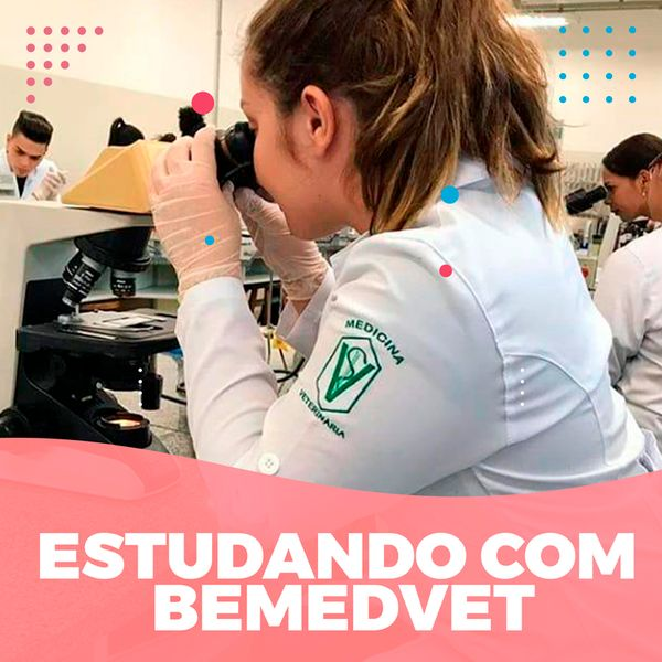 Imagem principal do produto Estudando com Bemedvet - Premium