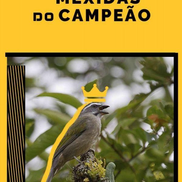 Imagem principal do produto EBOOK PARA SEU TRINCA FERRO