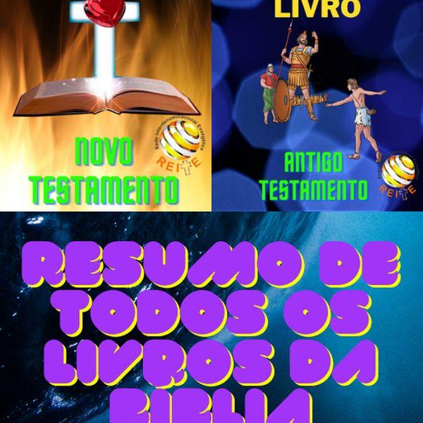 Imagem principal do produto Bíblia Livro por Livro
