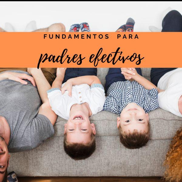Imagem principal do produto FUNDAMENTOS PARA PADRES EFECTIVOS