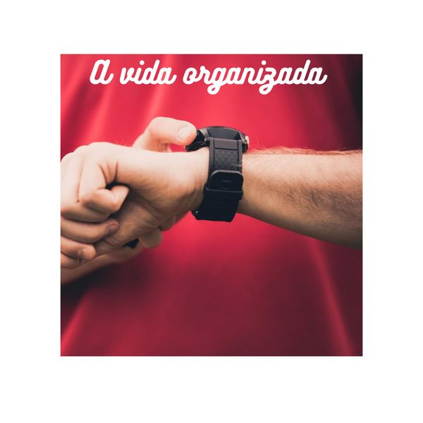 Imagem principal do produto A VIDA ORGANIZADA