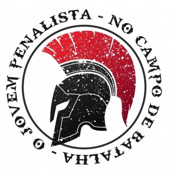 Imagem principal do produto O Jovem Penalista no Campo de Batalha Penal: Decágono Penal