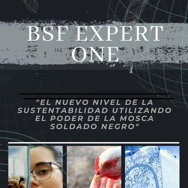 Imagem principal do produto BSF-EXPERT ONE PLUS