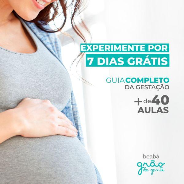 Imagem principal do produto Guia completo da Gestação - Beabá Grão de Gente