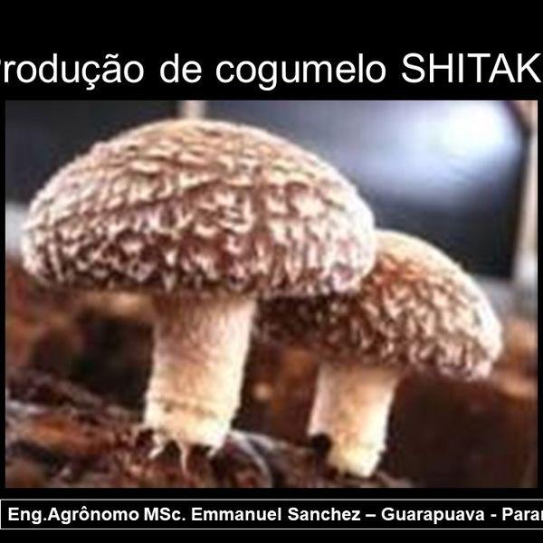 Imagem principal do produto Curso de Produção de Cogumelo SHITAKE