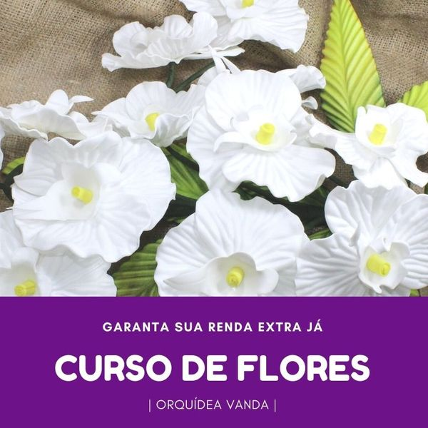 Imagem principal do produto CURSO DE ORQUÍDEAS  - ORQUÍDEA VANDA