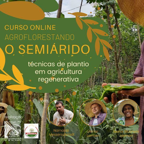 Imagem principal do produto Agroflorestando o Semiárido
