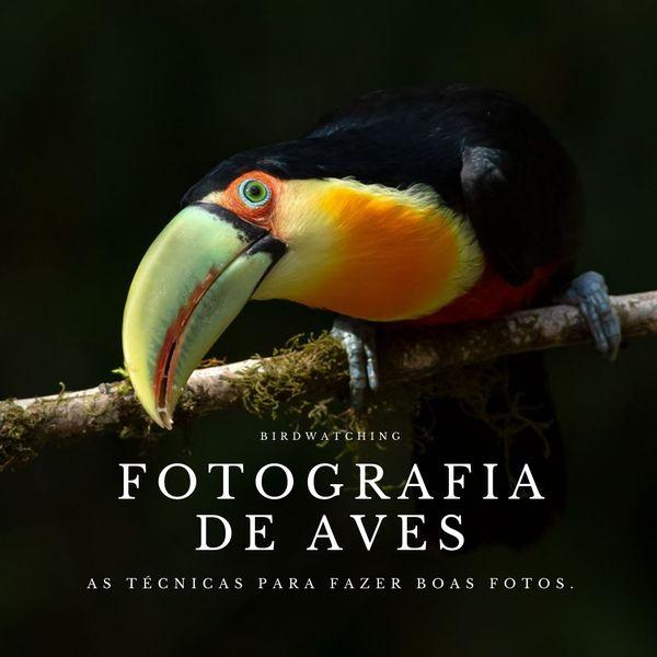 Imagem principal do produto Fotografia de Aves na Natureza - Dicas e Técnicas