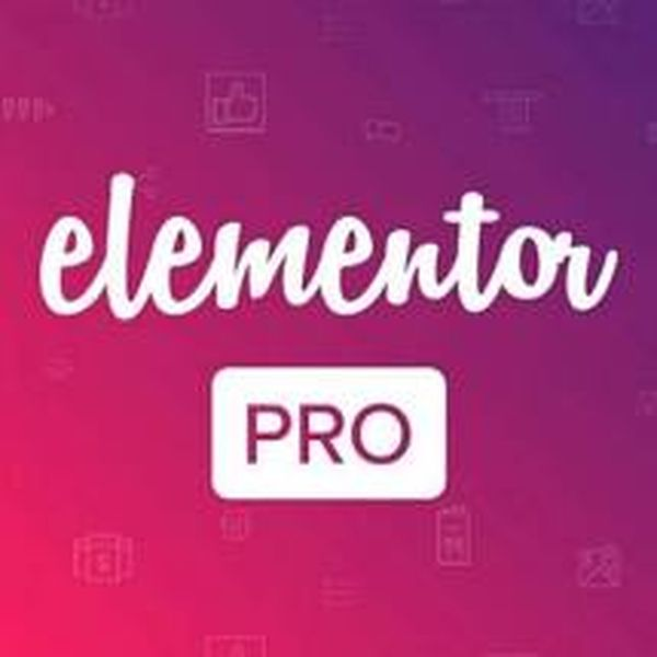 Imagem principal do produto Elementor PRO