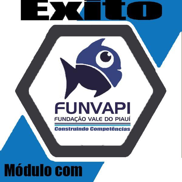 Imagem principal do produto Novo Módulo de 560 questões da banca FUNVAPI