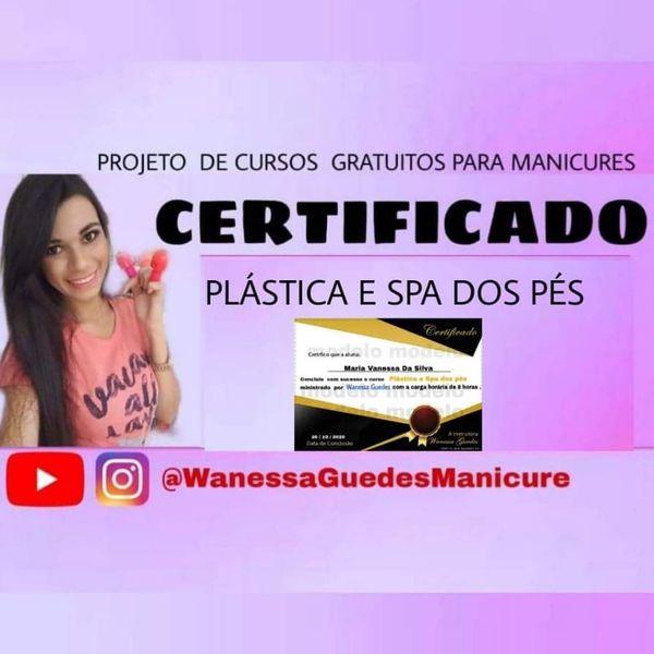 Imagem principal do produto Curso plástica com certificado