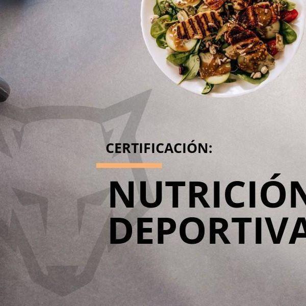 Imagem principal do produto ABC Nutrición Deportiva para Principiantes