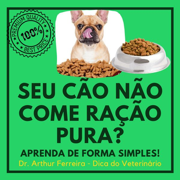 Imagem principal do produto Como Fazer Seu Cão Comer Só Ração.
