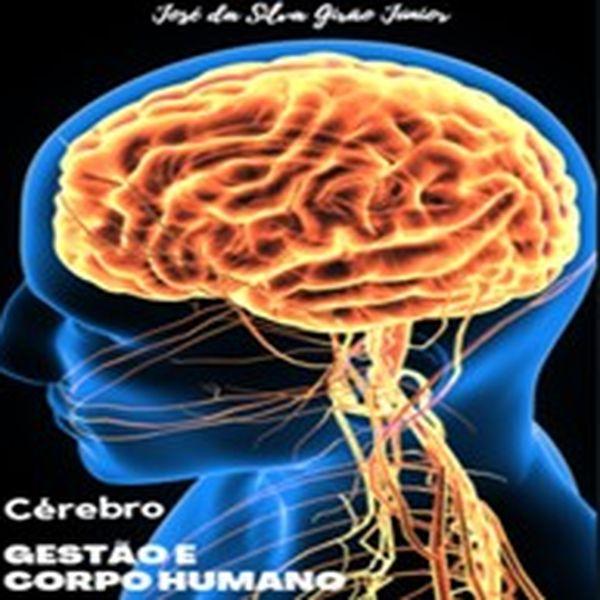 Imagem principal do produto Gestão e Corpo Humano - Cérebro