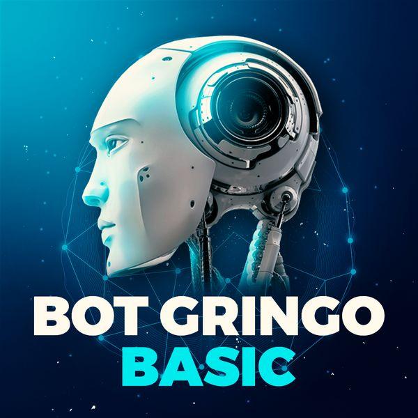 Imagem principal do produto Bot Gringo | Basic