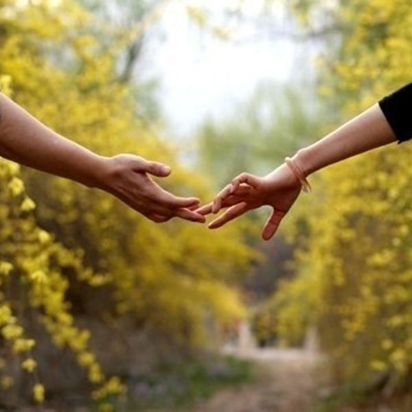 Imagem principal do produto A Lição dos Relacionamentos - (Na compra leve gratuitamente o eBook Reflexões sobre o Amor)