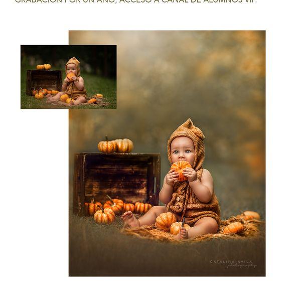 Imagem principal do produto Clase de edición para fotografías en exteriores CALABAZAS 2021